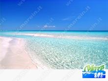 Spiagge e Itinerari - Spiaggia di Punta Prosciutto